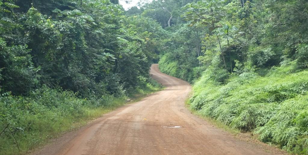 après avoir traversé une forêt dense où j'ai vécu l'une des plus grosses frayeurs de mon voyage