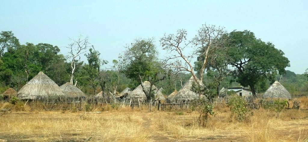 une Guinée rurale habitée majoritairement par le peuple Peul