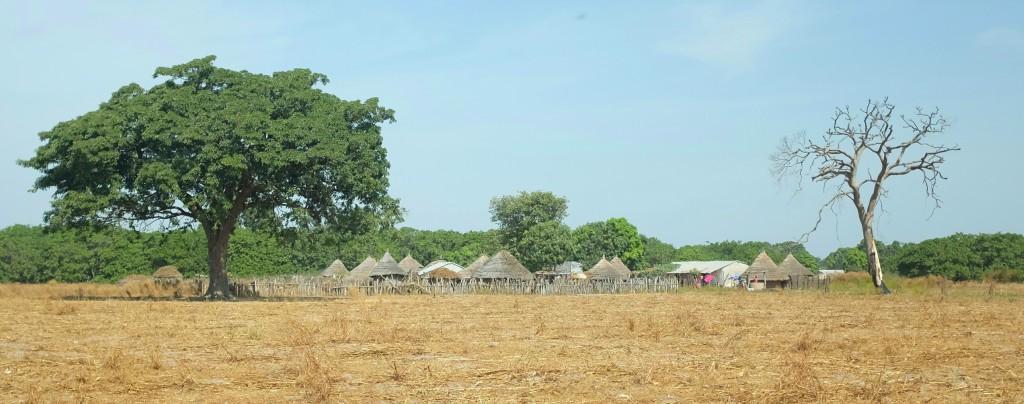 le long d'innombrables villages au petite maisons de terres rondes au toit de paille.