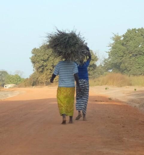 comme pour me rappeler, peut-être, de l'impact économique des routes goudronnées, ici en Afrique, par rapport à celles qui ne le sont pas.