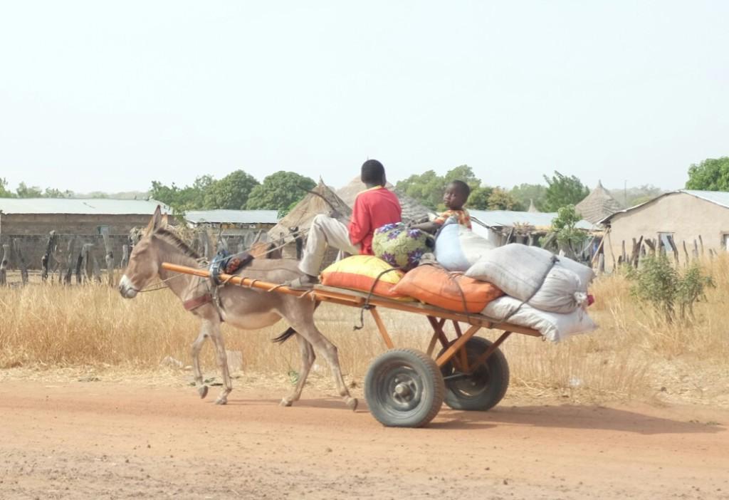 où la circulation principale est constituée de charrette qui m'ont rappelé au Sahel burkinabé.
