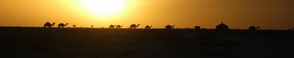 Le Sahara nourrit mes fantasmes depuis longtemps. Il les nourrit toujours aujourd'hui.