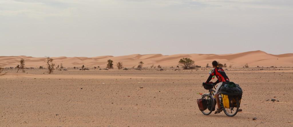 ce sont maintenant d'énormes dunes qui suivent la route sur plusieurs dizaines de kilomètres